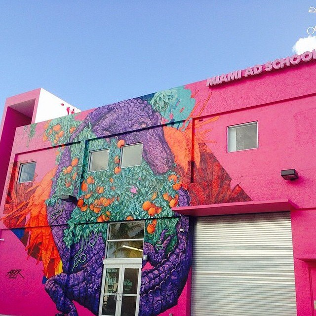 One_more_pic_of_my_Florida_inspirated_mural_in_Wynwood_Miami