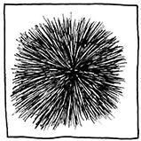 Штрихи из центральной точки