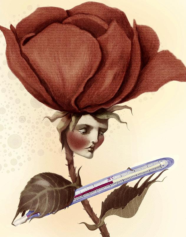 Прихворнувшая роза