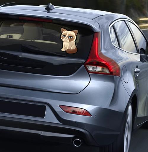 Сурове, грустне, котячне - наклейки на авто