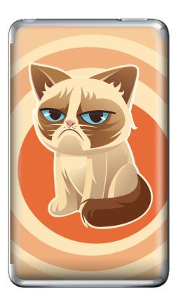 Наклейка на iPod Classic - Сурове, грустне, котячне