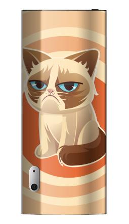 Наклейка на iPod nano 5 - Сурове, грустне, котячне