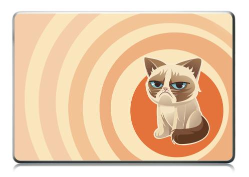 Наклейка на ноутбук - Macbook Retina Pro - Сурове, грустне, котячне