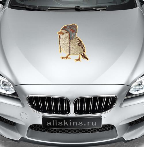 Птица в шапке - наклейки на авто