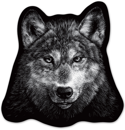 Наклейка на Телефон Apple iPhone 6 plus Волчище,  купить в Москве – интернет-магазин Allskins, полностьючерный, волк, животные, морда