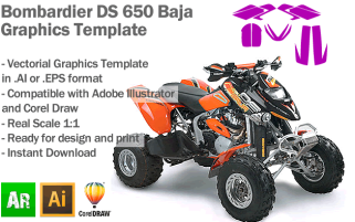 DS 650 Baja ATV Quad