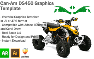 DS450 ATV Quad