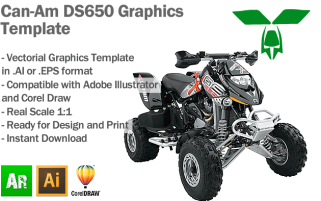 DS650 ATV Quad