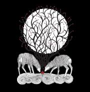 Прикольные футболки - No forest